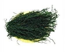 Сушёные водоросли Вакаме 500гр   170 руб
